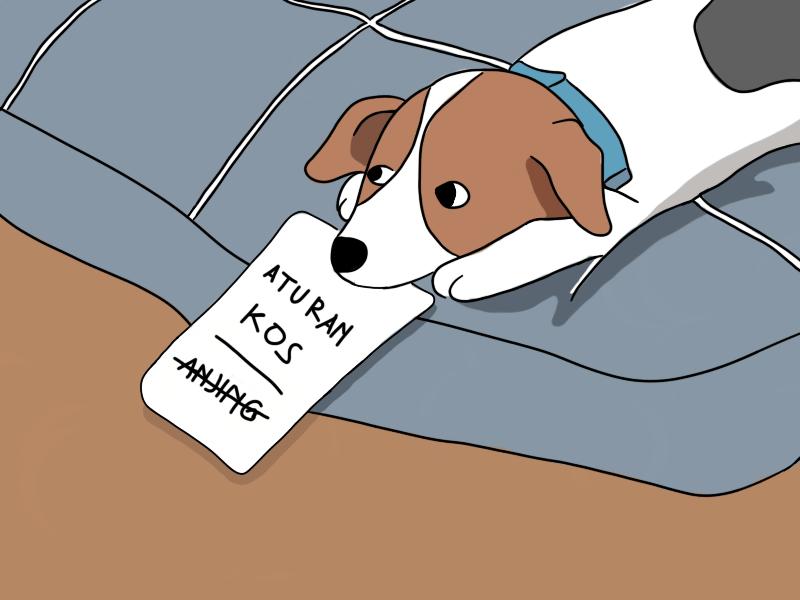 Opini Peraturan Kos Anjing min
